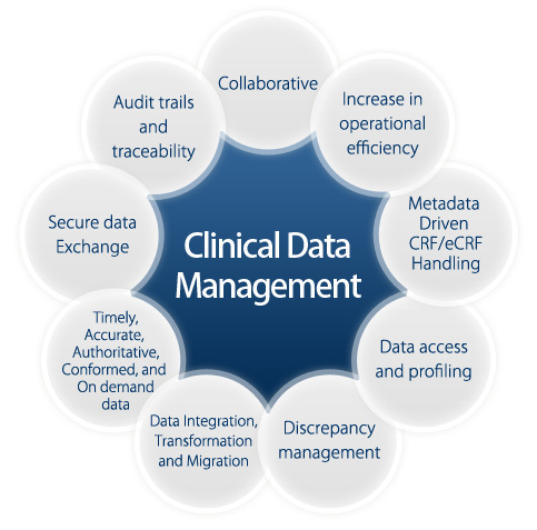 clinical data manager job katalyst healthcares life sciences houston tx