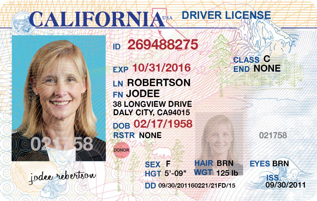 Sheetinstalsea Fake Canada - License Drivers